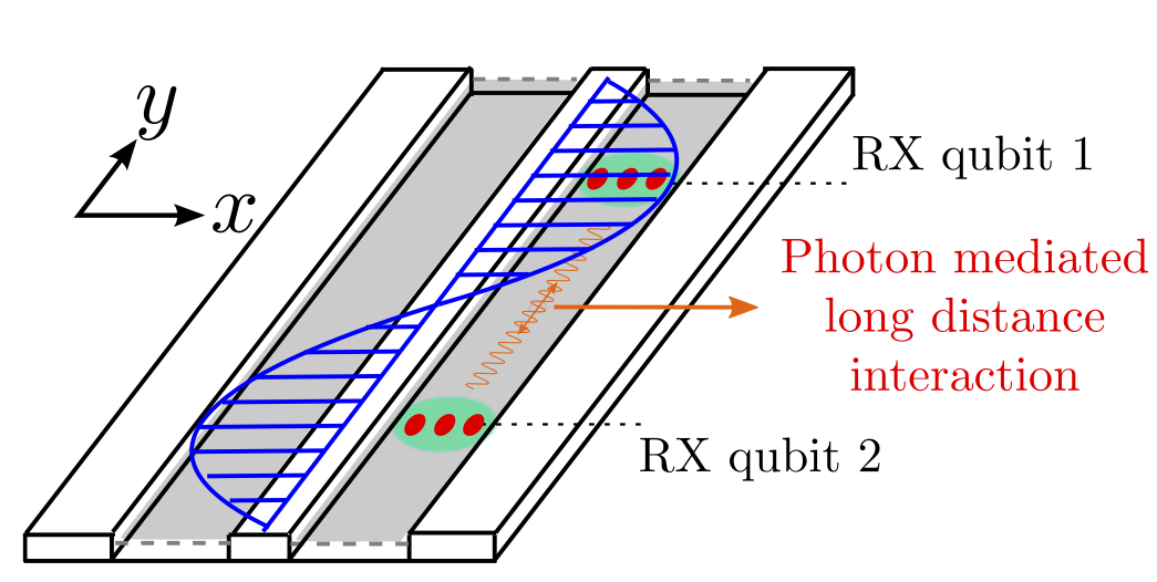 cavity QED with RX qubits